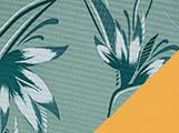 Noosa Palm