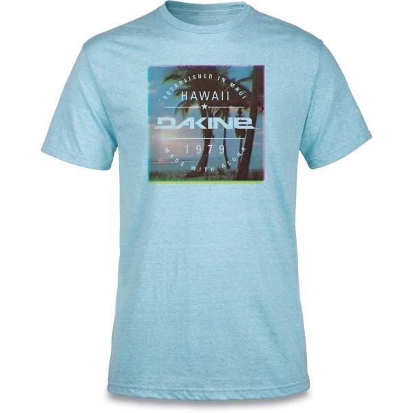 Dakine Postcard Palms Herren T-Shirt Aqua Snow